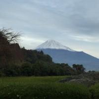 富士山 積雪